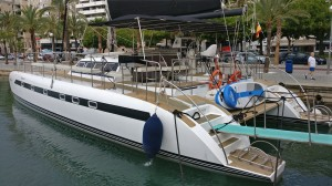 Catamaran Mallorca private free bird