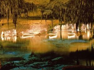Grotte del drago