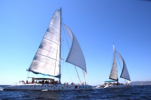 Mallorca catamarans sailing Taiti 75 and Taiti 60